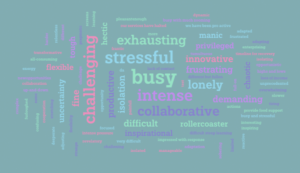 Participants at the London Plus webinar described their experience of working during lockdown in one word