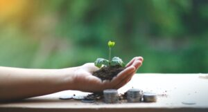 Hand holding a sprouting plant next to stacks of coins.